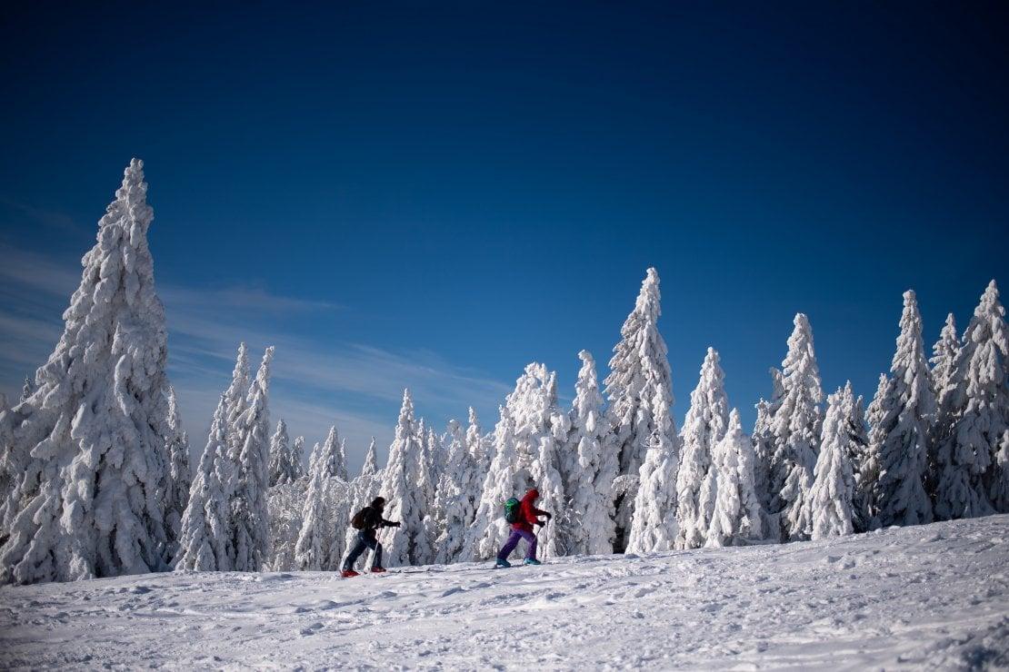 Cosa ci piace questa settimana: passeggiare in montagna con la neve