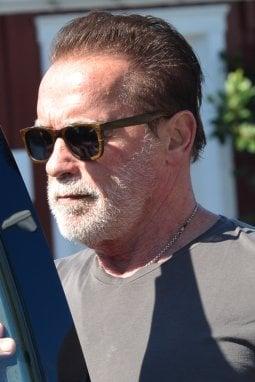 Arnold Schwarzenegger (SplashNews)