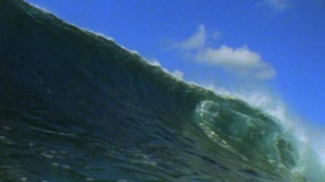 Tsunami 2004 Kuolleet