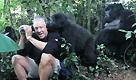 Uganda, lo straordinario incontro coi gorilla