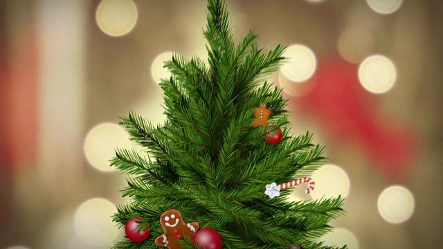Colpo di cucina Speciale Natale - Estratto - Video TvZap