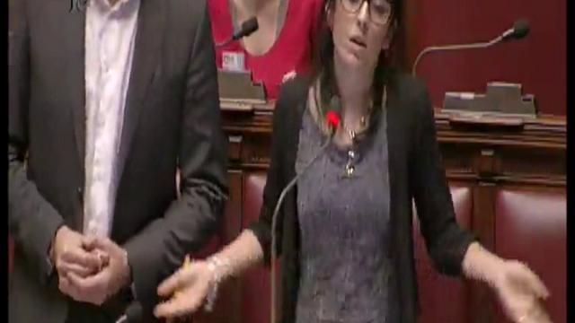Gaffe della deputata M5s: critica Boschi, poi l'annuncio della liberazione di Greta e Vanessa
