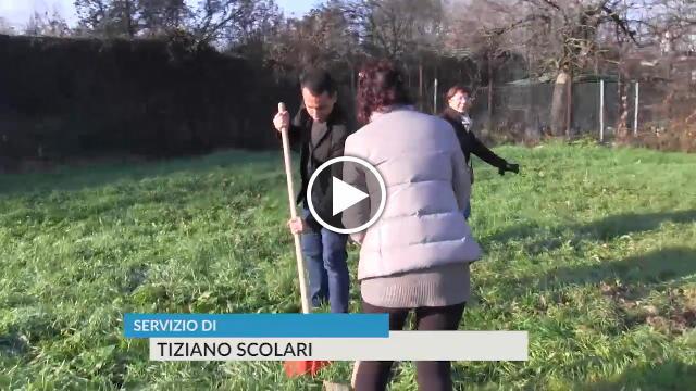 Milano di maio giardiniere per il nuovo bosco urbano del for Giardiniere milano