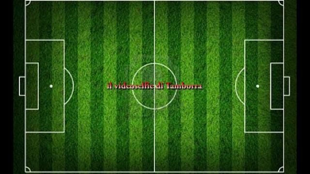 """Bari sconfitto dal Crotone. Il videoselfie di Tamborra: """"Partita buttata"""""""