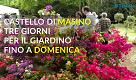 Il weekend in Canavese e dintorni in un minuto