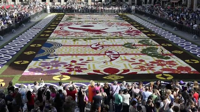 Tappeto Floreale Bruxelles : Fiandre in fiore da ferragosto un tappeto di fiori
