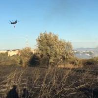 Roma, brucia il parco del Pineto, il volontario Lipu commosso