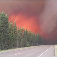 Usa: brucia Yellowstone, chiusa l'entrata meridionale del parco nazionale