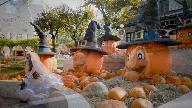 Gardaland versione Halloween  il nuovo allestimento a base di zucca - Video  Corriere delle Alpi 782da9e464d2