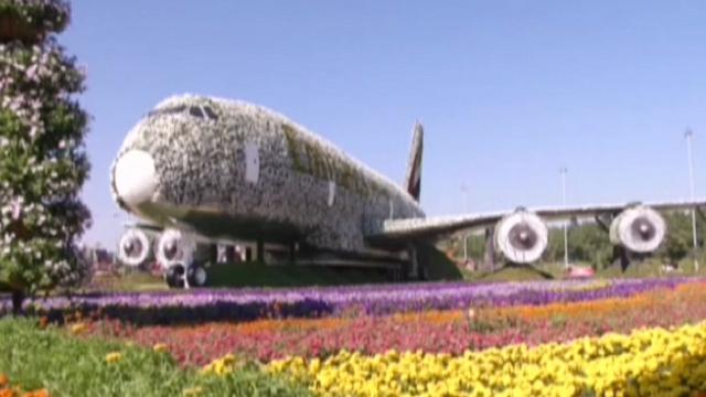 Emirati: l'Airbus ricoperto di fiori entra nel Guinness dei Primati