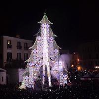 Bari vecchia, si accende l'albero di Natale fatto di luci