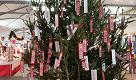 Natale al mercato per conquistare corso Sardegna