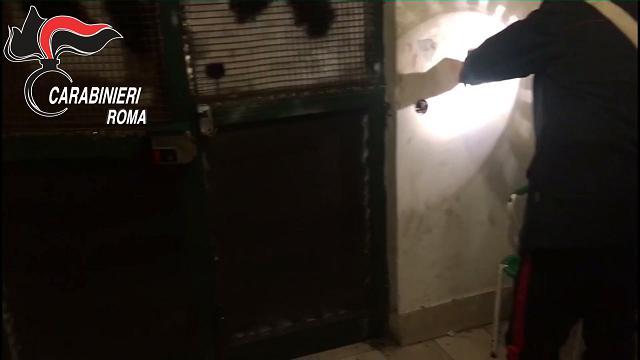 Tor Bella Monaca come Gomorra, i pusher blindano il portone per fermare i carabinieri