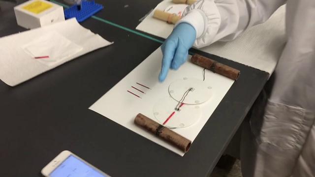 Medicina per identificazione di vermi