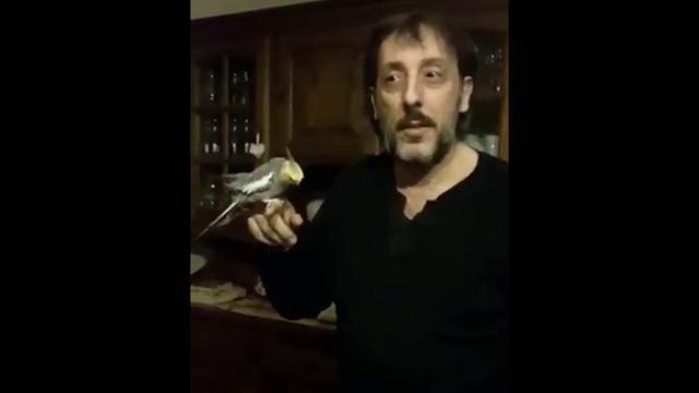 La Fiorentina batte la Juve: Ceccherini e il pappagallino festeggiano cantando l'inno viola