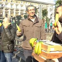 Palme in piazza Duomo, la Lega per protesta distribuisce banane ai passanti