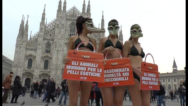 Milano, settimana della moda alle porte: la protesta delle donne-coccodrillo  in Duomo