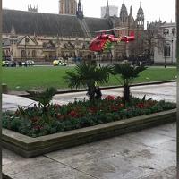 Londra, attacco a Westminster: l'eliambulanza atterra nella piazza del Parlamento