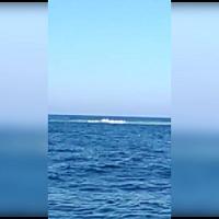 Misteriose esplosioni in mare al largo di Montecristo: ecco il video dei pescatori