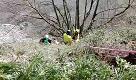 Cade dalla Pietra di Bismantova, l'intervento dei soccorritori