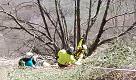 Precipita alla Pietra di Bismantova, ecco l'intervento del soccorso alpino