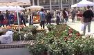 Piazza della Vittoria ricoperta di fiori, i commenti felici dei passanti