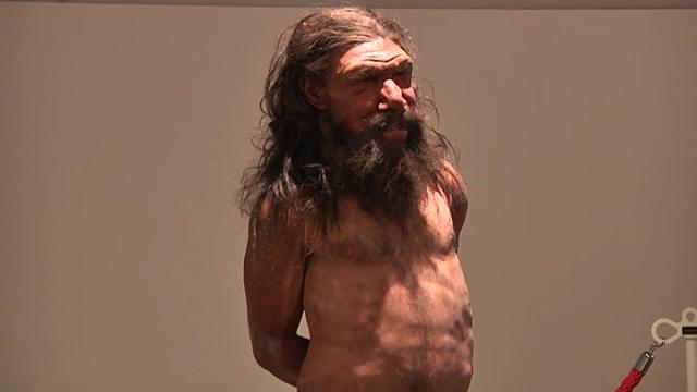 Risultati immagini per uomo di altamura museo
