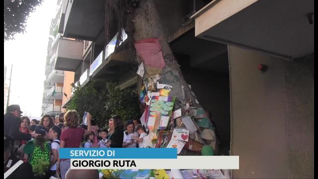 Palermo, 17,58. Il silenzio sotto l'Albero Falcone 25 anni dopo Capaci