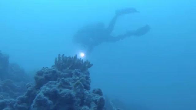 barriere coralline di carbonio datazione