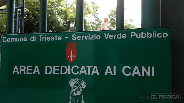 Ufficio Verde Pubblico Trieste : Attici con cantina in vendita in zona giardino pubblico trieste