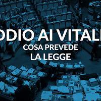 Addio ai vitalizi: cosa prevede la legge - Videoscheda