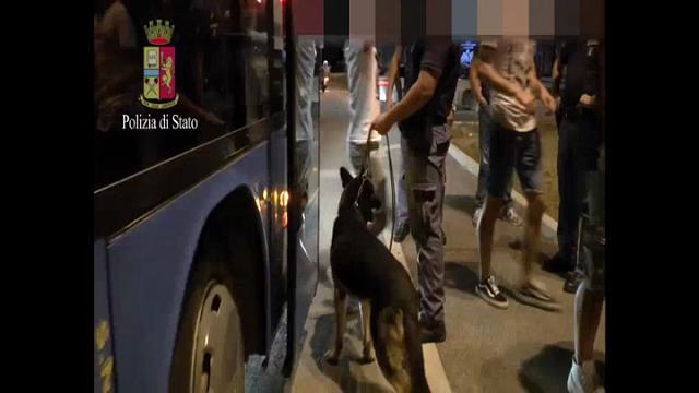 """Operazione """"Movida"""", la polizia arresta 52 persone in una settimana"""