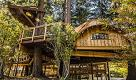 """""""La natura aumenta la creatività"""": Microsoft costruisce case sull'albero per i dipendenti"""