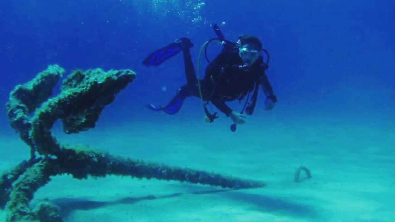 Risultati immagini per fondali marini santa flavia