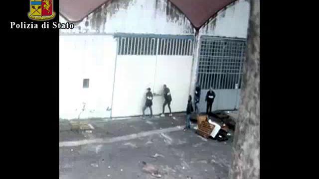 Blitz della polizia a Ferrara, sequestrati 120 chili di marijuana e arrestate 5 persone