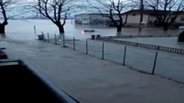 Maltempo, esonda l'Enza nel Reggiano: evacuata Lentigione