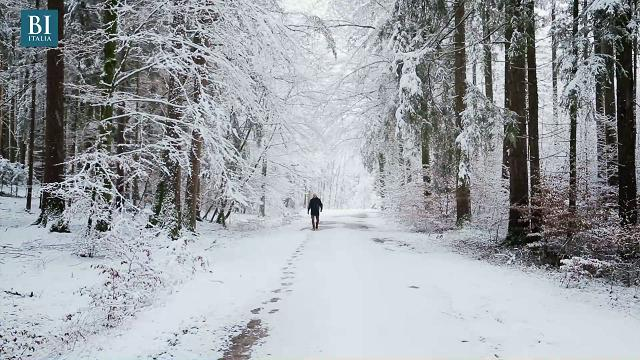 Guidare sulla neve in sicurezza: 11 consigli per cavartela anche in situazioni difficili