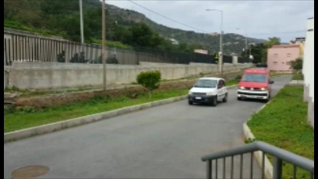 Palermo: cinghiale in una scuola, panico