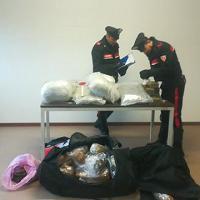 Bologna, i carabinieri lo fermano per un controllo e gli trovano quasi 80 kg di droga
