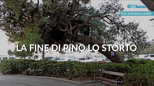 """Trieste, la fine di """"Pino lo storto"""""""