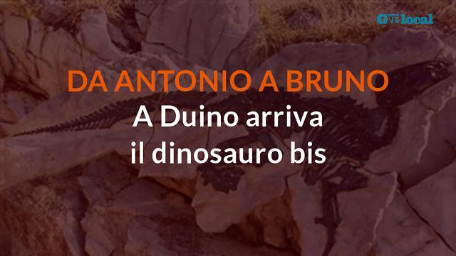Dopo Antonio c'è Bruno: a Duino arriva il dinosauro bis