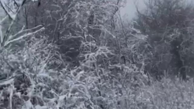 Teolo, ore 12 di giovedì: nevica sul monte Venda