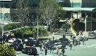 California, spari nel quartier generale di YouTube: i dipendenti escono con le mani alzate