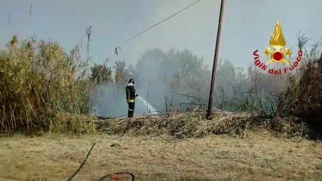 Caldo e vento, incendio di sterpi a ridosso delle case