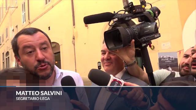 Governo, Salvini: ''Oggi è la festa di Di Maio e Renzi, non voglio rovinarla''
