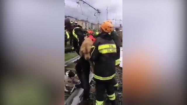 Genova, crollo ponte Morandi: i Vigili del Fuoco con il cane in spalla tra le macerie