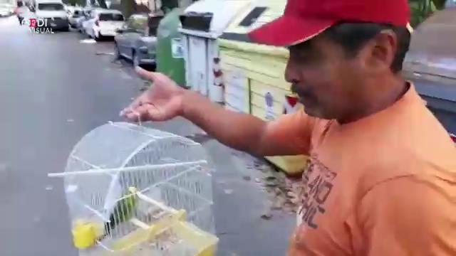 Genova, crolla ponte Morandi: gli sfollati recuperano gli animali