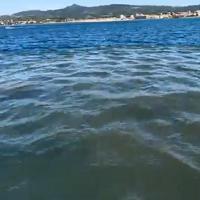 Rosignano, chiazza maleodorante in mare davanti al depuratore