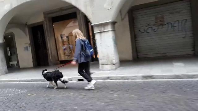 Udine, alla Maratonina la corsa con i cani