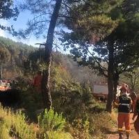 Incendio Monte Serra: il bosco bruciato nella zona di Vicopisano